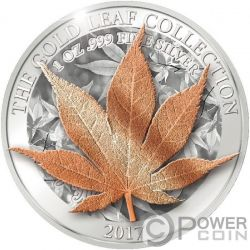 JAPANESE MAPLE Acero Giapponese 3D Gold Leaf Collection 1 Oz Moneta Argento 5$ Tokelau 2017