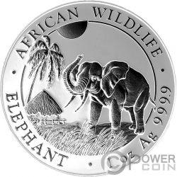 ELEPHANT Elefante Rutenio Shadows 1 Oz Moneta Argento 100 Shillings Somalia 2017