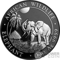 ELEPHANT Elefant Ruthenium Enigma 1 Oz Silber Münze 100 Shillings Somalia 2017