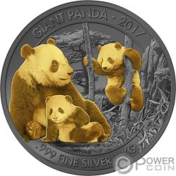 GIANT PANDA Riese Golden Enigma 1 Kg Kilo Silber Münze 1000 Francs Cameroon 2017