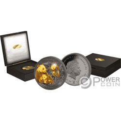 GIANT PANDA Riese Golden Enigma 1 Kg Kilo Silber Münze 1000 Francs Cameroon 2017