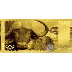 BUFFALO Bufalo Big Five Foil Banconota Oro 1500 Shillings Tanzania 2018