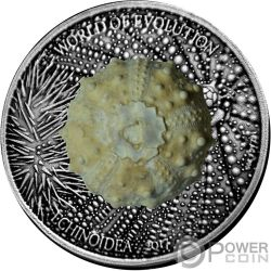 ECHINOIDEA Equinoideos Erizo de Mar World of Evolution 1 Oz Moneda Plata 1000 Francos Burkina Faso 2017