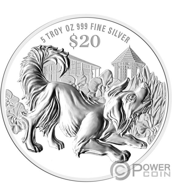 YEAR OF THE DOG Chinese Almanac 5 Oz Silber Münze 20$ Singapore 2018