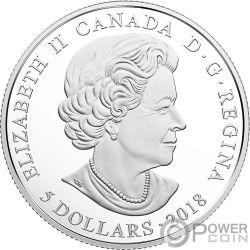 FEBRUARY Febbraio Birthstone Swarovski Crystal Moneta Argento 5$ Canada 2018