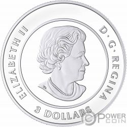 CELEBRATION OF LOVE Heart Silver Coin 3$ Canada 2018