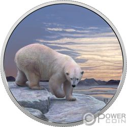 POLAR BEAR Orso Polare Arctic Animals Northern Lights 2 Oz Moneta Argento 30$ Canada 2018