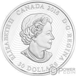 POLAR BEAR Oso Polar Arctic Animals Northern Lights 2 Oz Moneda Plata 30$ Canada 2018
