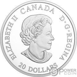 NORTHERN FURY Furia Norte Norse Figureheads 1 Oz Moneda Plata 20$ Canada 2018