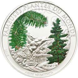 CHRISTMAS TREE Famous Plants Smelling Монета 100 Франков Бенин 2010