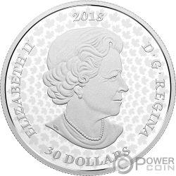 QUEENS GATE Gardens 2 Oz Silver Coin 30$ Canada 2018