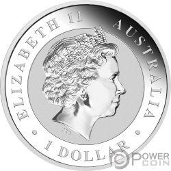 KOOKABURRA Colorata World Money Fair WMF 1 Oz Moneta Argento 1$ Australia 2018