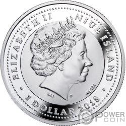 ETERNAL KNOT Nodo Infinito Amuleto Ambra Moneta Argento 1$ Niue 2018