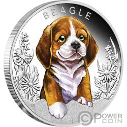 BEAGLE Dog Puppies Silver Coin 50 Cents Tuvalu 2018