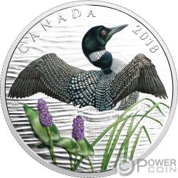 COMMON LOON Beauty and Grace Silver Coin 10$ Canada 2018