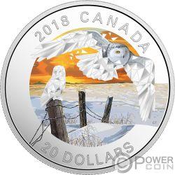 SNOWY OWLS Gufi delle Nevi Geometric Fauna 1 Oz Moneta Argento 20$ Canada 2018