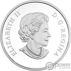SNOWY OWLS Geometric Fauna 1 Oz Silver Coin 20$ Canada 2018