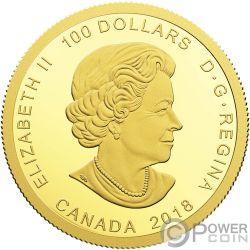 FROG REVEALS A GIFT Rana Sapo Regalo Moneda Oro 100$ Canada 2018