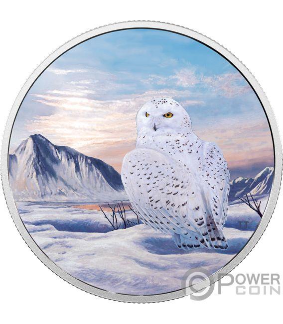 SNOWY OWL Gufo Nevi Arctic Animals Northern Lights 2 Oz Moneta Argento 30$ Canada 2018
