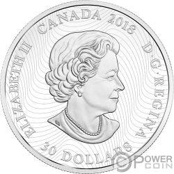 SNOWY OWL Arctic Animals Northern Lights 2 Oz Серебро Монета 30$ Канада 2018