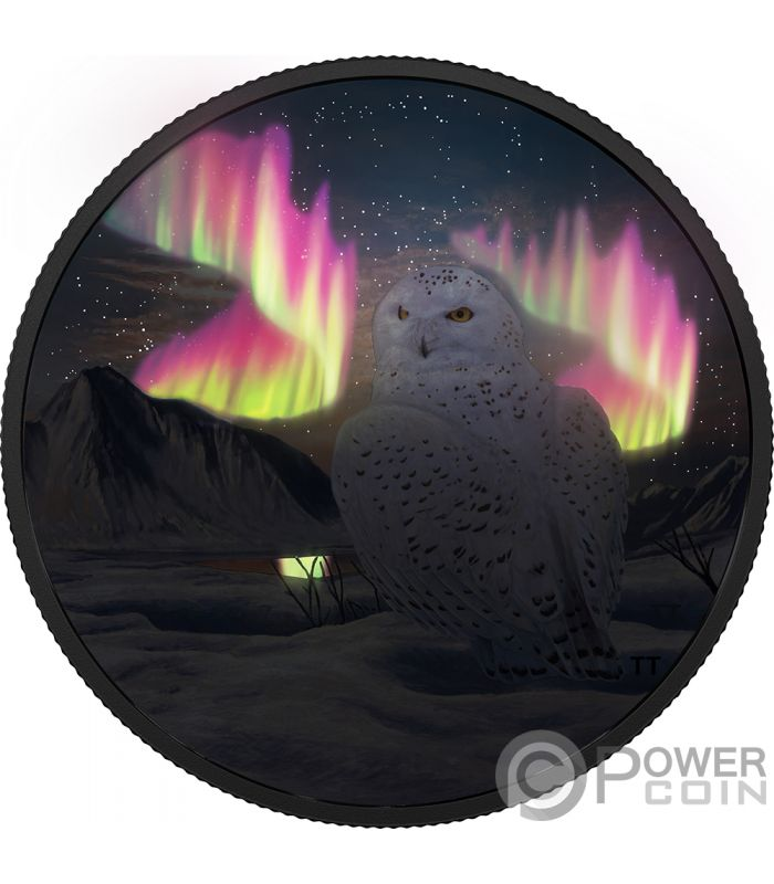 Snowy Owl Arctic Animals Northern Lights 2 Oz Silver Coin