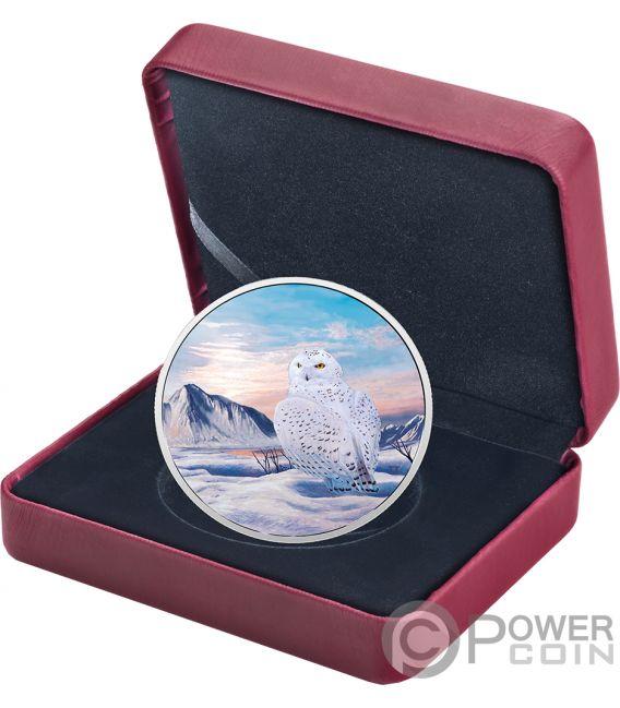 SNOWY OWL Buho Nival Arctic Animals Northern Lights 2 Oz Moneda Plata 30$ Canada 2018