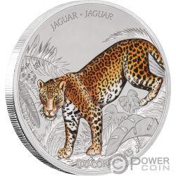 JAGUAR Wildlife 1 Oz Moneda Plata 100 Cordobas Nicaragua 2018