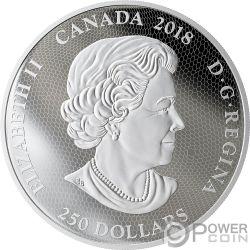 TYRANNOSAURUS REX Fierce Gaze 1 Kg Kilo Moneda Plata 250$ Canada 2018