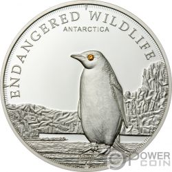 PENGUIN Pinguino Polar Endangered Wildlife Swarovski Moneda Plata 5$ Cook Islands 2008
