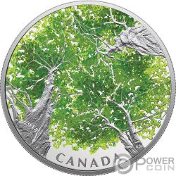 MAPLE LEAF Canadian Canopy 2 Oz Silver Coin 30$ Canada 2018