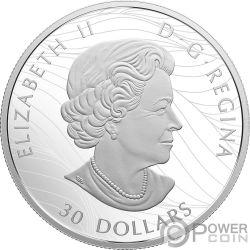 MAPLE LEAF Hoja Arce Canadian Canopy 2 Oz Silver Coin 30$ Canada 2018