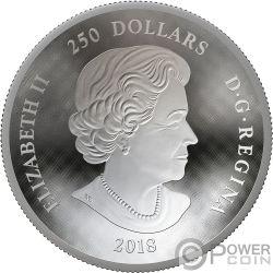 MAPLE LEAF Hoja Arce Dome Forma Convexa 1 Kg Kilo Moneda Plata 50$ Canada 2018