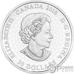 FIREWORKS AT THE FALLS Niagara Glow In The Dark 2 Oz Серебро Монета 30$ Канада 2018