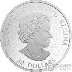 ROYAL CANADIAN MINT Zecca Canadese 110 Anniversario 2 Oz Moneta Argento 30$ Canada 2018