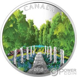MAPLE TREE TUNNEL Leaf 1 Oz Silver Coin 20$ Canada 2018
