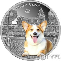 WELSH CORGI Pembroke Our faithful friends Silber Münze 500 Franken Chad 2018