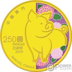 PIG Lunar Year Gold Coin 250 Patacas Macao Macau 2019