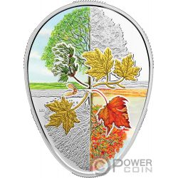 FOUR SEASONS OF THE MAPLE LEAF Foglia Acero Forma 1 Oz Moneta Argento 20$ Canada 2018