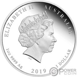 PIG Cerdo Lunar Year Series 1 Oz Moneda Plata 1$ Australia 2019