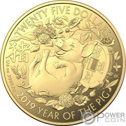 PIG Maiale Lunar Year 1/4 Oz Moneta Oro 25$ Australia 2019