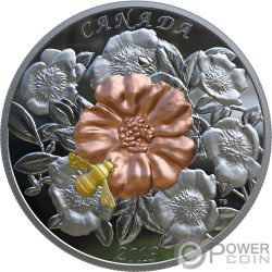 BUMBLE BEE AND BLOOM 5 Oz Silver Coin 50$ Canada 2019