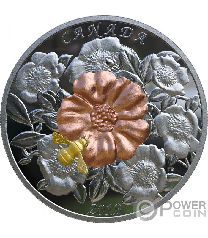 Bumble Bee And Bloom 5 Oz Silver Coin 50 Canada 2019