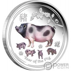 PIG Jahr de Schwein Lunar Year Series Coloured 1 Oz Silber Münze 1$ Australia 2019