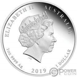 PIG Lunar Year Series Coloured 1 Oz Silver Coin 1$ Australia 2019