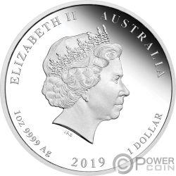 PIG Lunar Year Series Set 4x1 Oz Silver Coins 1$ Australia 2019