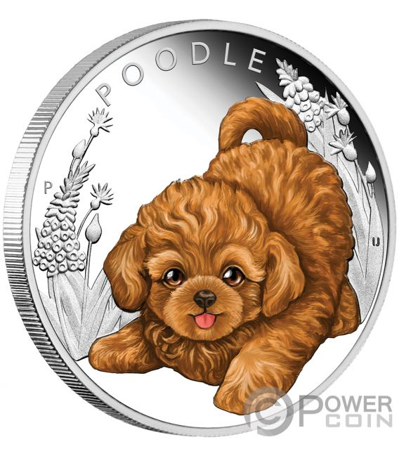 POODLE Dog Puppies Silver Coin 50 Cents Tuvalu 2018