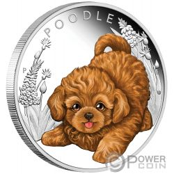 POODLE Cane Puppies Moneta Argento 50 Centesimi Tuvalu 2018