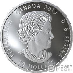 BALD EAGLE Aguila Calva Reflections 1 Oz Moneda Plata 20$ Canada 2019