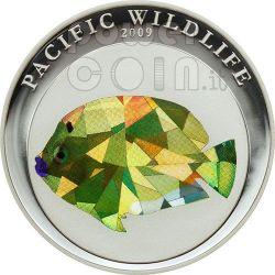 PESCE ANGELO Pacific Wildlife Moneta Prisma 5$ Palau 2009