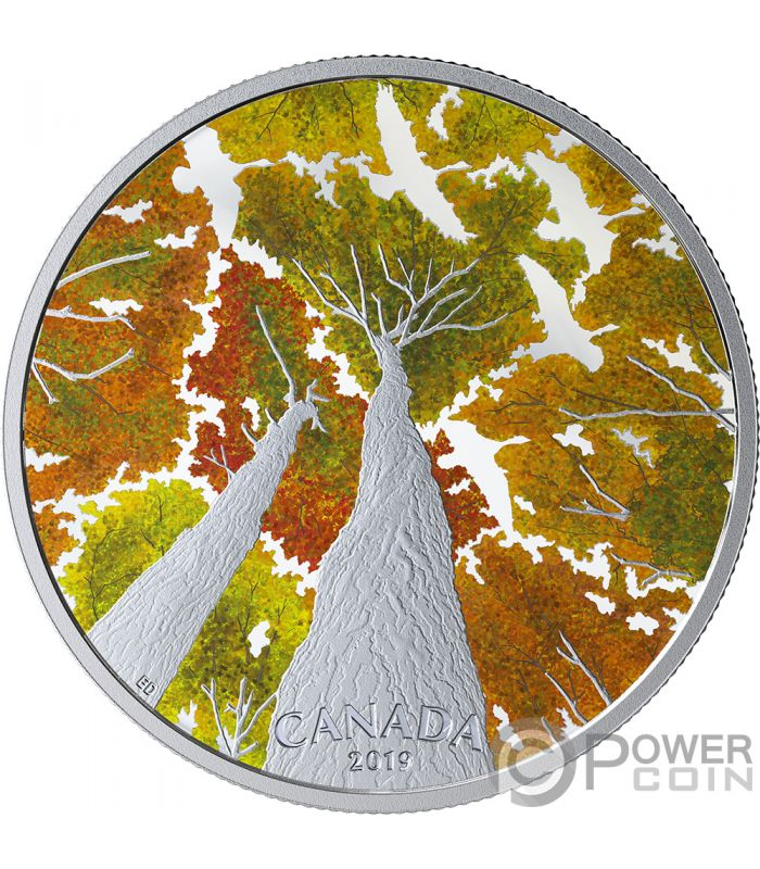 Goose Maple Leaf Canadian Canopy 2 Oz Silver Coin 30